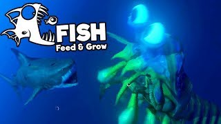 Feed and Grow Fish Gameplay German - Shrimp Vs. Great White Shark