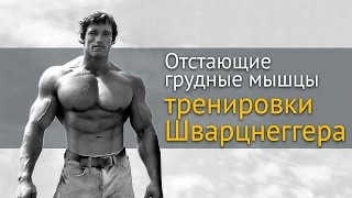 видео Рост мышц симметрия и позвоночник. Искривление, защемление нерва и развитие мышц HD