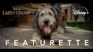 Lady and the Tramp | Adoption Featurette | Disney+