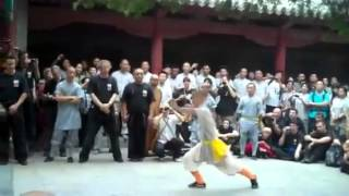 Shaolin Warriors 2013
