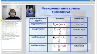 Классы биологических молекул  Биологические полимеры