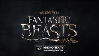 Фантастические звери и места их обитания / Fantastic Beasts and Where to Find Them (Trailer | 2016)
