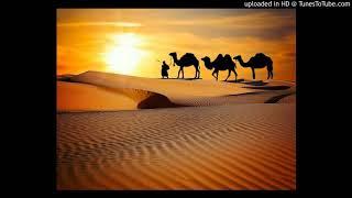 サハラの夕日を あなたに見せたい さよならを私から決めた別離れの旅な...