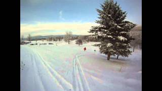 White Grass local powder hounds and rippers