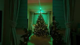 LIFX Downlight, Holly Animated Theme, Christmas Tree