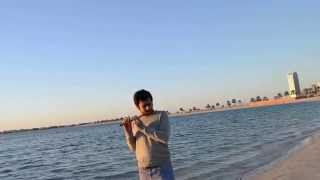 Flute on the Beach - Pahadi