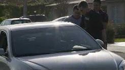 Operation Dark Horizon - Auto Insurance Fraud Bust