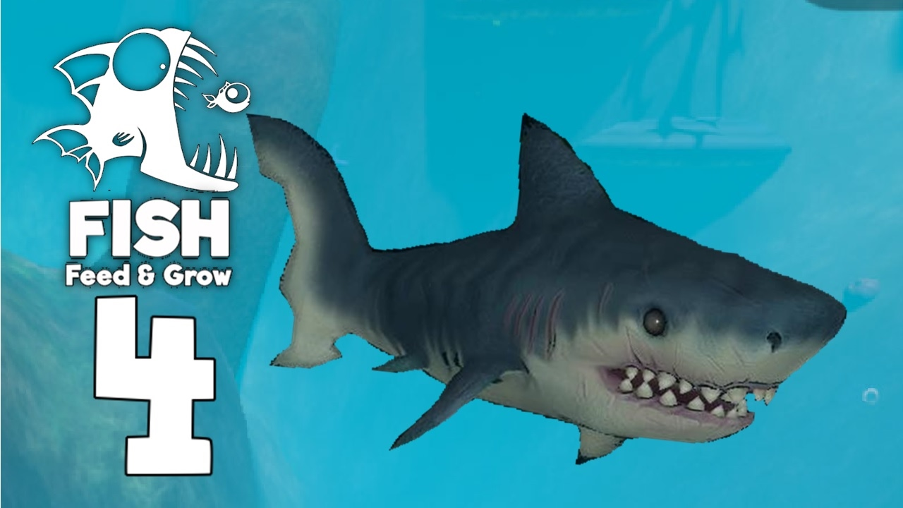 Tiger shark feeding frenzy feed and grow fish gamplay for Fed and grow fish
