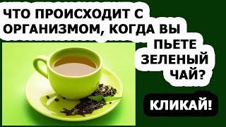 Зеленый чай польза и вред для здоровья человека