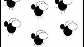 Die Toten Hosen - Die Fliege