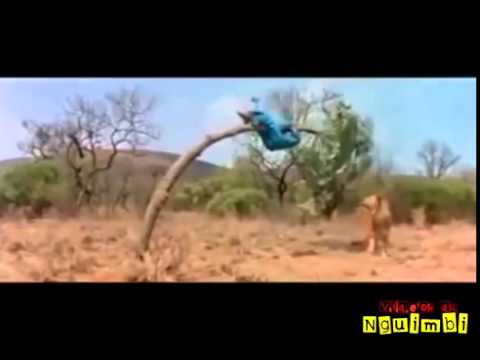 Hahaha so very funny videos LOL   Watch or Download   DownVids net