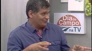 Conservação de variedades crioulas no Semiárido - Dia de Campo na TV