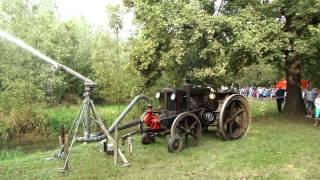 Fiera dei Mussi di Trebaseleghe 2014 - The ancient donkey's Fair of Trebaseleghe (Italy) 2014