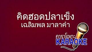 คิดฮอดปลาเข็ง - เฉลิมพล มาลาคำ [KARAOKE Version] เสียงมาสเตอร์