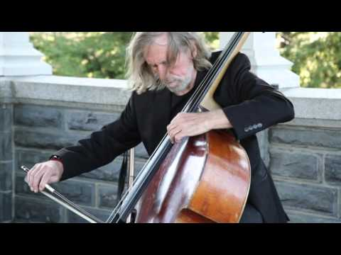 Double Bass Player at Belvedere Castle