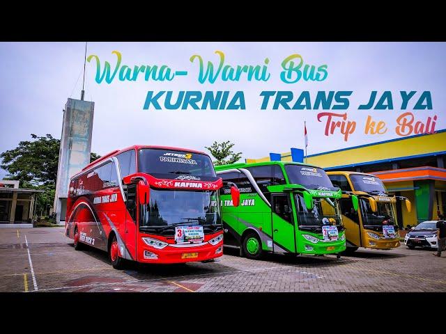 Warna-Warni Bus Kurnia Trans Jaya Otw ke Bali.