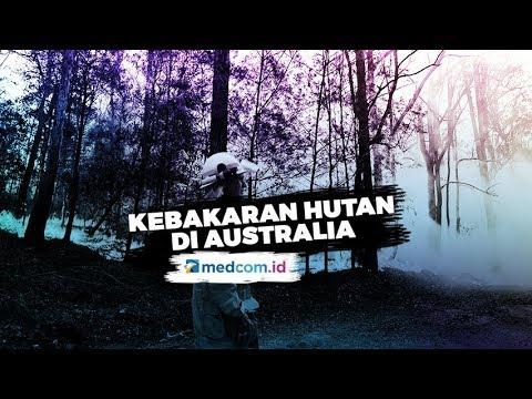 Kota Yang Terbakar Di Australia Tak Akan Kembali Pulih?