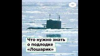 Что нужно знать о подводной лодке «Лошарик»?