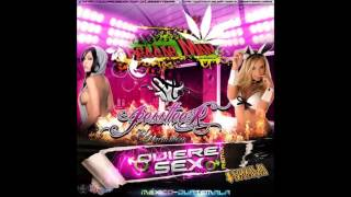 Quiere Sex Remix Reggae Man & Dj Jester    MEXICO FT GUATEMALA