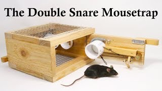 the-double-snare-mousetrap-invented-by-a-youtube-viewer-mousetrap-monday