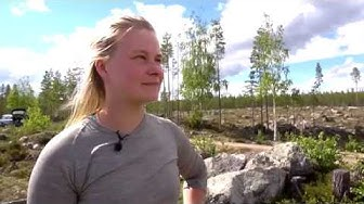 Skogsbruk i renens land