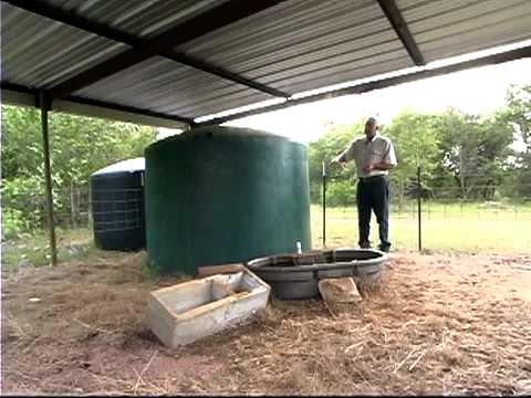 Rainwater Capture on the Freeman Ranch