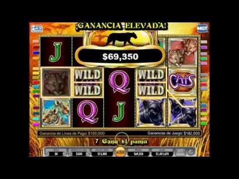 CATS CASINO ; Excelente juego gane $650,000 en 5 minutos, checa como