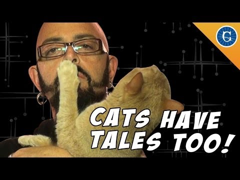 Your Cat Has A Tale Too!