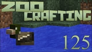 Zoo Crafting! Wild Duck Chase! - Episode #125