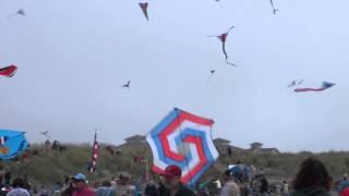 Kite Festival WSIKF 2014 Ascension 3 Thumbnail