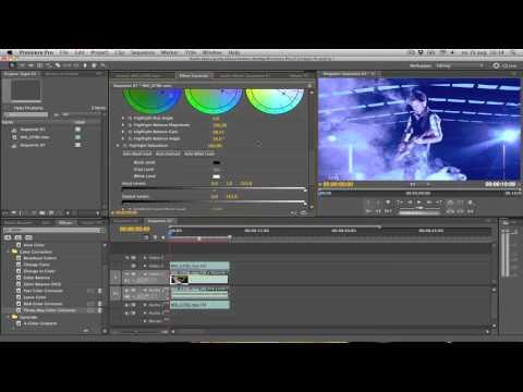 Premiere Pro Tutorial - Hype Williams Effect