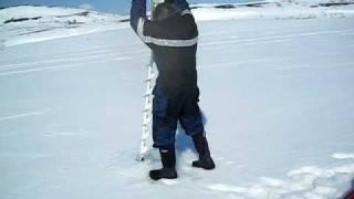 Бензопили Stihl Вт 45 & 155 см льоду
