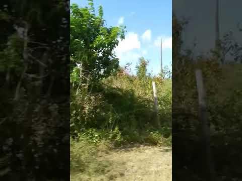 Barbuda post hurricane Irma part 3