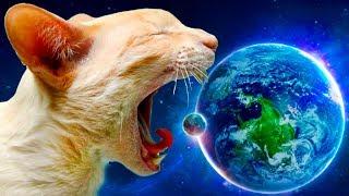 Кот РОБОТ хочет съесть планету #18 Съедобная Планета Tasty Planet Forever с Кидом на крутилкины
