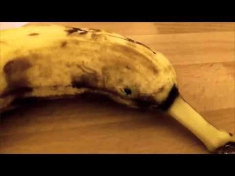 Big Spider Pops Out Banana