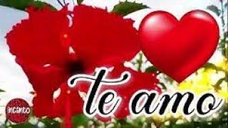 Un detalle para el amor de mi vida Mensaje de amor para el hombre de mi vida ¡TE AMO! 💝 Haz llorar