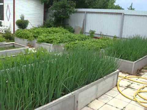 удобные красивые фото огорода грядки для и