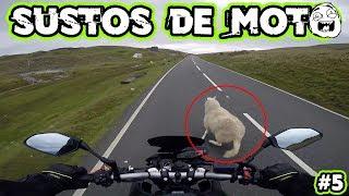 SUSTOS DE MOTO (EP. 05)
