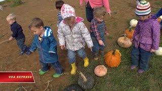 Trẻ con học 'làm nông'
