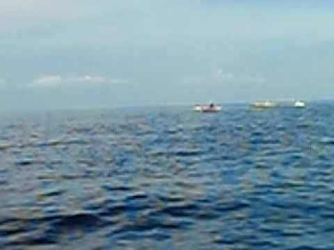 Fishing Bohol sea
