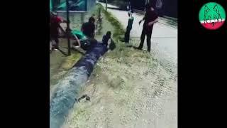 Чеченский водный аттракцион ма садокъ цар