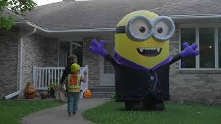 8ft Airblown Gone Batty Minion Halloween Inflatable Youtube