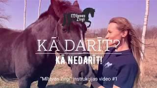 """Kā darīt? Kā nedarīt! """"Mītavas zirgi"""" instrukcijas VIDEO #1 IEPAZĪŠANĀS AR ZIRGU"""