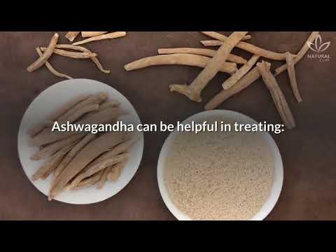 "ashwagandha---the-herbal-""fountain-of-youth"""