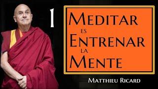 Meditar es Entrenar la Mente-Matthieu Ricard-1