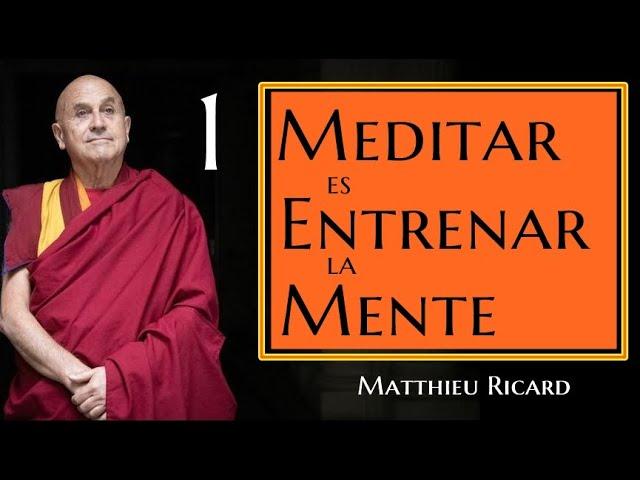Meditar es Entrenar la Mente-Matthieu Ricard