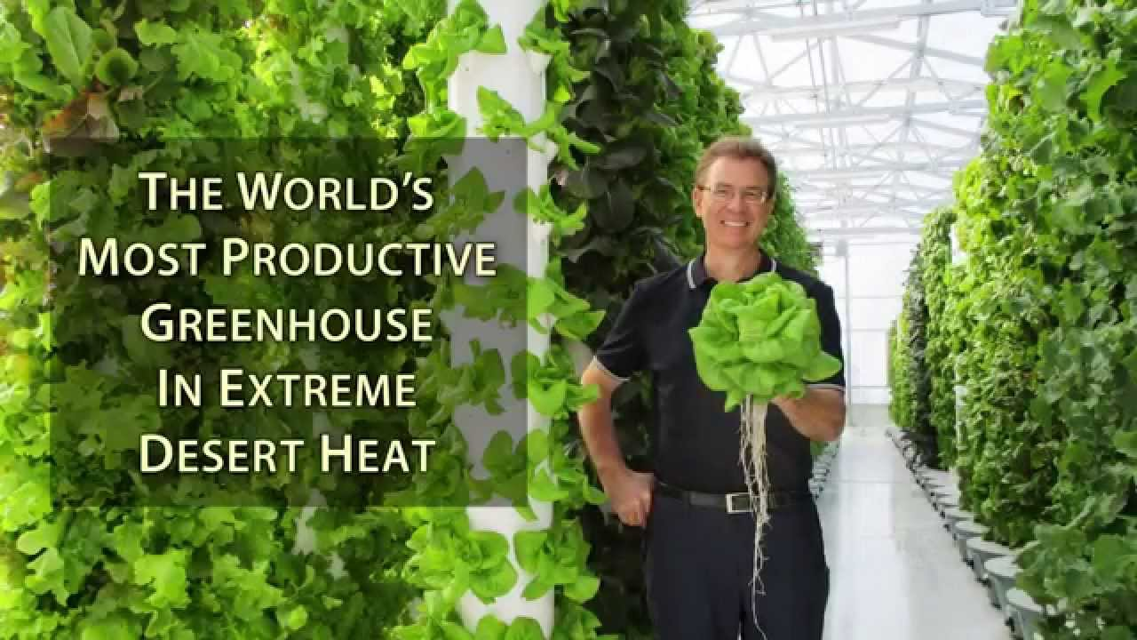 The World S Most Productive Greenhouse In Extreme Desert