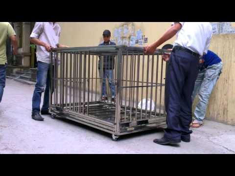 chuồng nuôi chó bằng Inox 304 lắp ghép