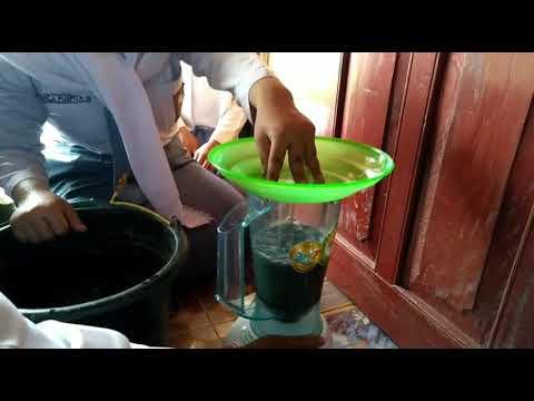 Pot Bunga Dari Bubur Kertas Youtube