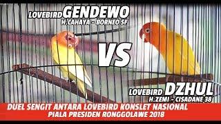 PIALA PRESIDEN RONGGOLAWE 2018 : DUEL ANTARA LOVEBIRD KONSLET GENDEWO & DZHUL DI KELAS 750 RIBU